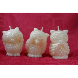 The 3 wise owls